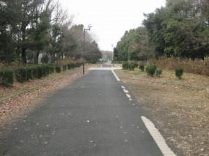 トロッコ道1